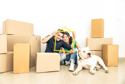 Tips to Make Moves Less Stressful for Pets